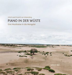 Piano in der Wüste